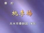 秦腔《桃李梅》全本天水市秦剧团 mp4下载